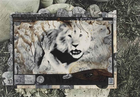 loliondo from the end of the game by peter beard