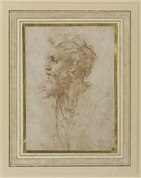 head of a bearded man in profile facing left, possibly a self-portrait by parmigianino