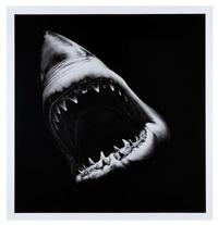big shark by robert longo
