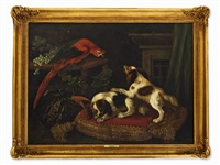 spaniels with parrot by francesco fieravino (il maltese)