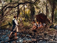fort of fronds by justine kurland