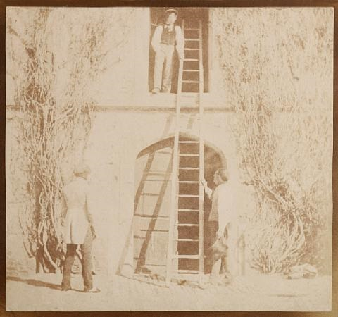 the ladder by william henry fox talbot