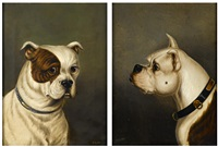 two bulldogs (2 works) by james (of bath) loder