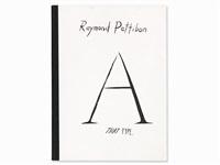 plots on loan, ny, 01 by raymond pettibon