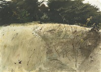 fall grasses by andrew wyeth