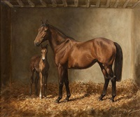the new arrival by desmond snee