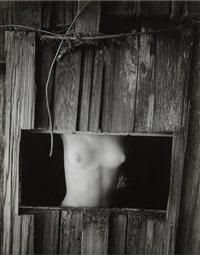 nude in window by wynn bullock