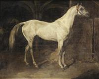 cheval gris ou l'aly by théodore géricault