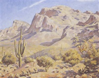 canyon cliff in the desert by howard daniel becker