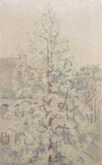 blühender birnbaum in abendstimmung by ida gerhardi