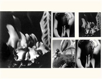 self-portrait in the desert - black madonna and orchids, arizona (3 works) by elisabeth sunday