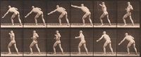 animal locomotion, pl. 343 by eadweard muybridge