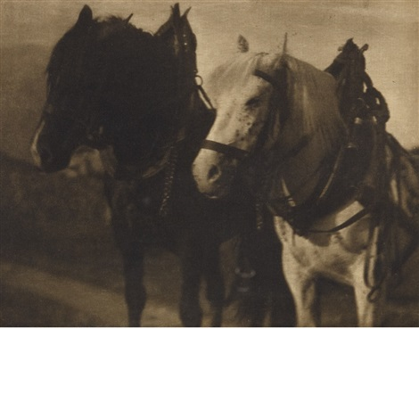 horses (from camera work) by alfred stieglitz