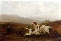 setters by a stream (+ walking up grouse; pair) by m. jackson
