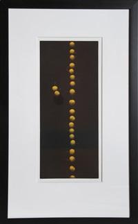 twenty-two cherries (yellow) by yozo hamaguchi