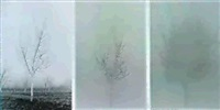 walnut tree orchard (triptych)(colored inks on two sheets ofpaper and black & white photo-graph. by charles gaines