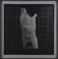 torso by ron cooper