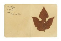 greetings and love from reds and dove by arthur dove