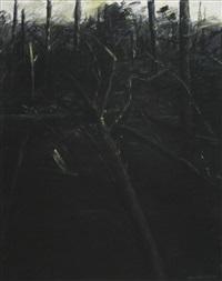 verbrannter wald by max kaminski