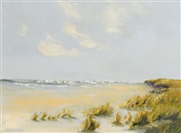 low tide at the dunes by thelma mansfield