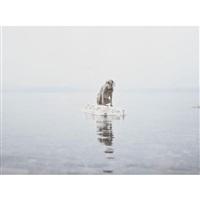 floating away by william wegman