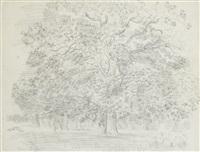grand arbre by raoul dufy