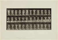 animal locomotion, 1887 (16 works) by eadweard muybridge