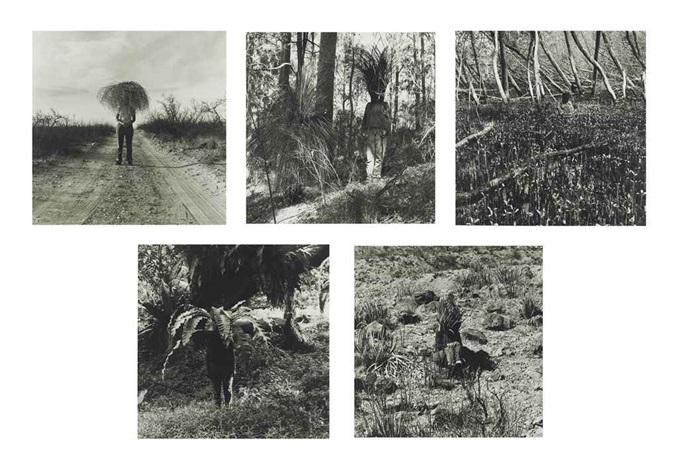 vegetation (set of 5) by simryn gill