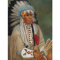 chief star blanket by henry metzger