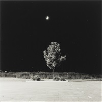fort collins, colorado by robert adams