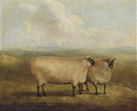 a prize ram bred by mr. william sainsbury (collab. w/ william henry davis) by james (of bath) loder