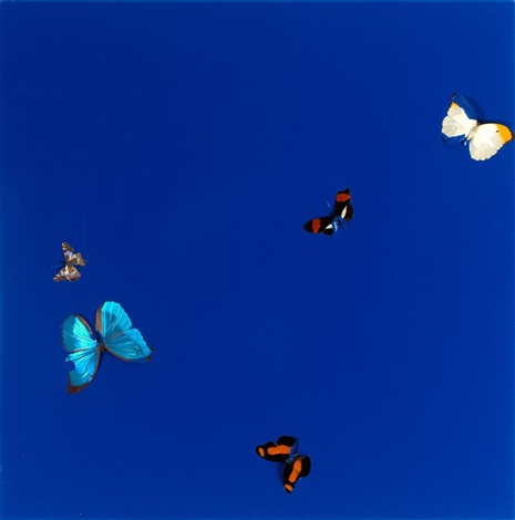 i need love by damien hirst