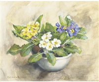 blue, yellow and white primula's by elise claudine arntzenius