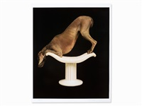 pedestal by william wegman