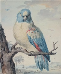 perroquet dans un paysage exotique by aert schouman
