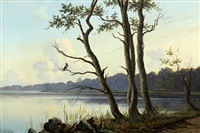 scenery from the brink of a lake with a crow in a tree by peter (johann p.) raadsig