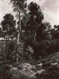 contadina nel bosco by giovanni corvini