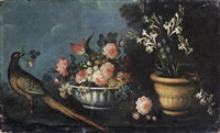 a cock pheasant with a bowl of flowers and a terracotta pot of tuber roses on a stone ledge (+ another; pair) by giuseppe pesci