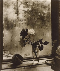 the last roses by josef sudek
