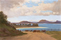 the derwent river from brown's river road by william charles piguenit