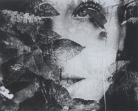 selected images by sanne sannes