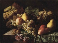 pears, a pumpkin, grapes, an apple, walnuts and daisies on a partly-draped table by jan frans van dael