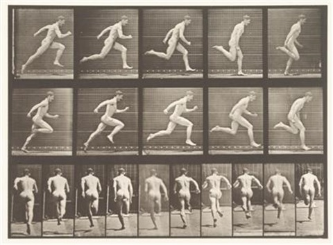 plate 63 from animal locomotion by eadweard muybridge