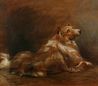 collie (+ a portrait of a woman, verso) by joszi arpad koppay