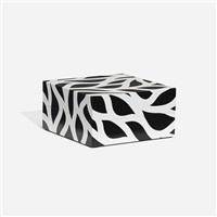 loopy doopy box by sol lewitt