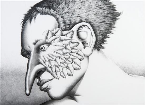 superb bird by robert lostutter