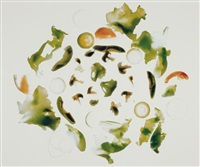 fast foods mixed green salad (lettuce, tomatoes, zucchini, mushrooms, broccoli, avocado, onions) by robert heinecken