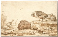four ducks by a nest by anthonie van borssom