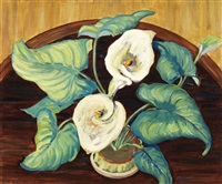 floral pattern - callas by edith grace coombs