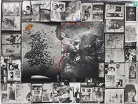 buffalo herd/ buffalo control diptych by peter beard